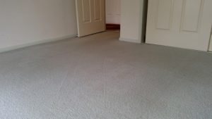 carpet cleaning empty room Pallara