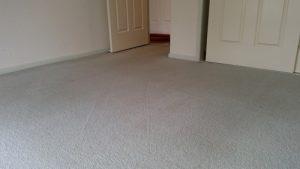 carpet cleaning empty room Pallara